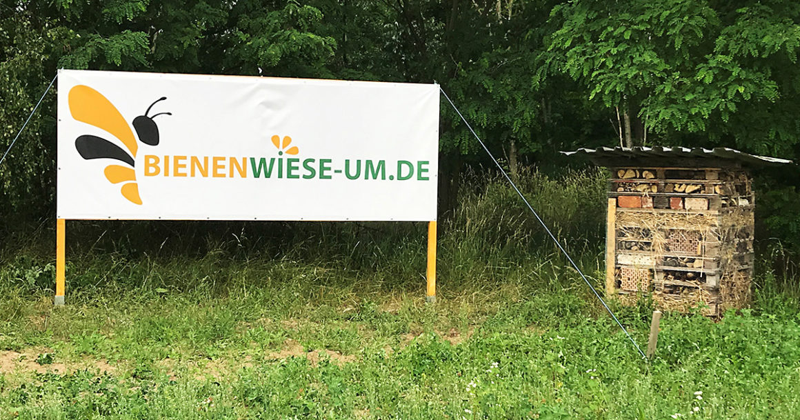 Gut zu sehen - Unser Banner für die Bienenwiese