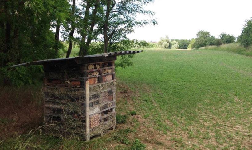 Unser Insektenhotel an der Bienenwiese